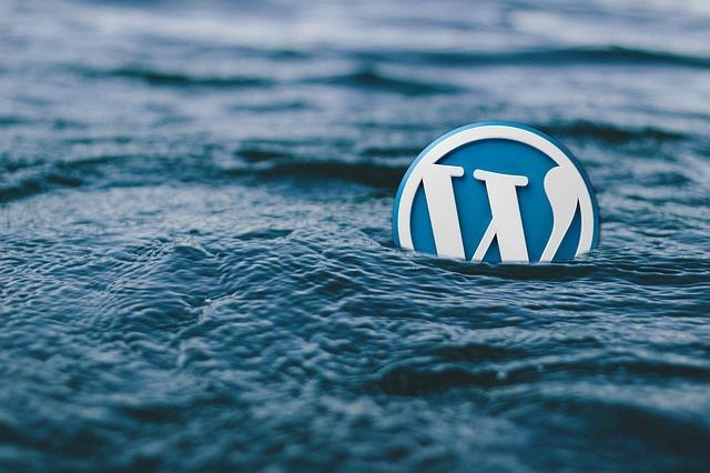 WordPress, le CMS numéro 1