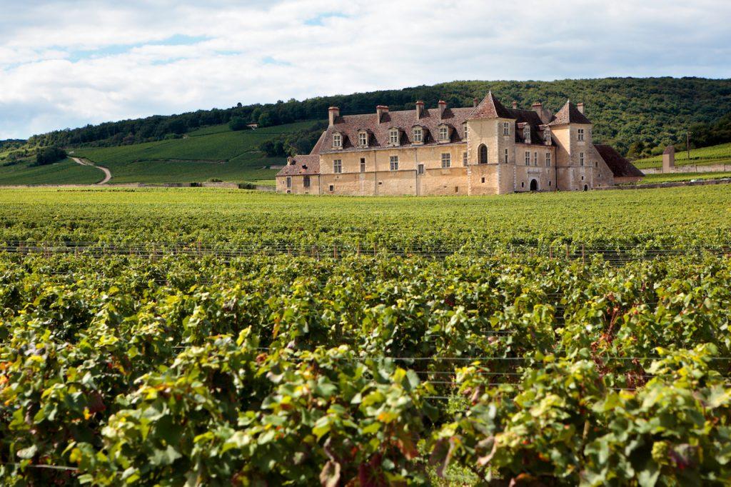 Château avec vignoble