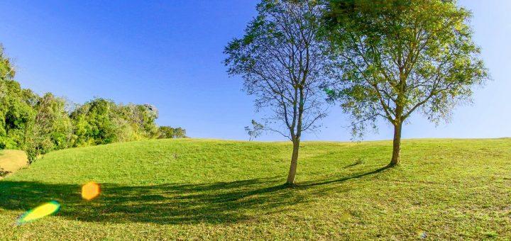Terrain de plusieurs hectares