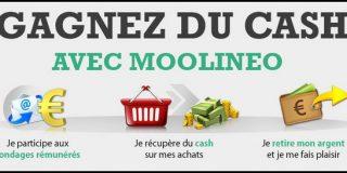 Gagner de l'argent avec Moolineo